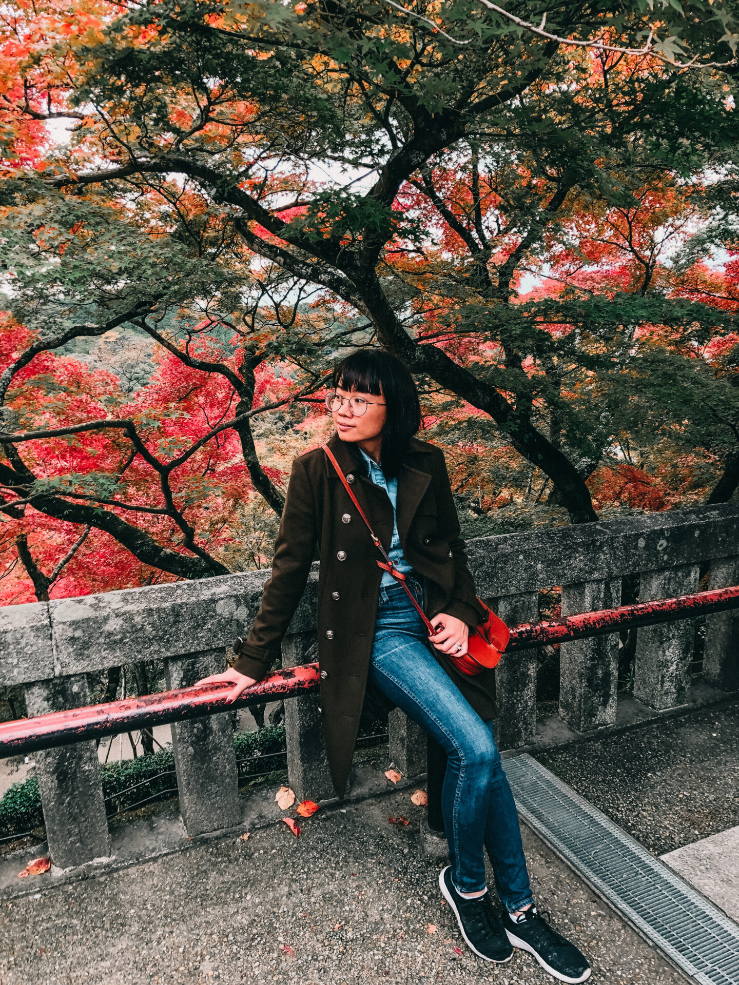 Autumn in Kiyomizu-dera